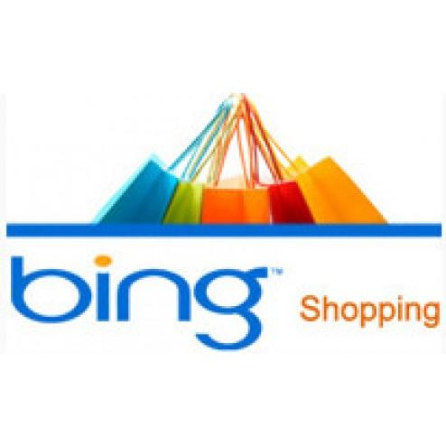 Bing Data Feed - Interspire Add-ons