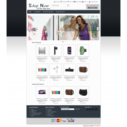 ShopNow - Bigcommerce Template (Default)